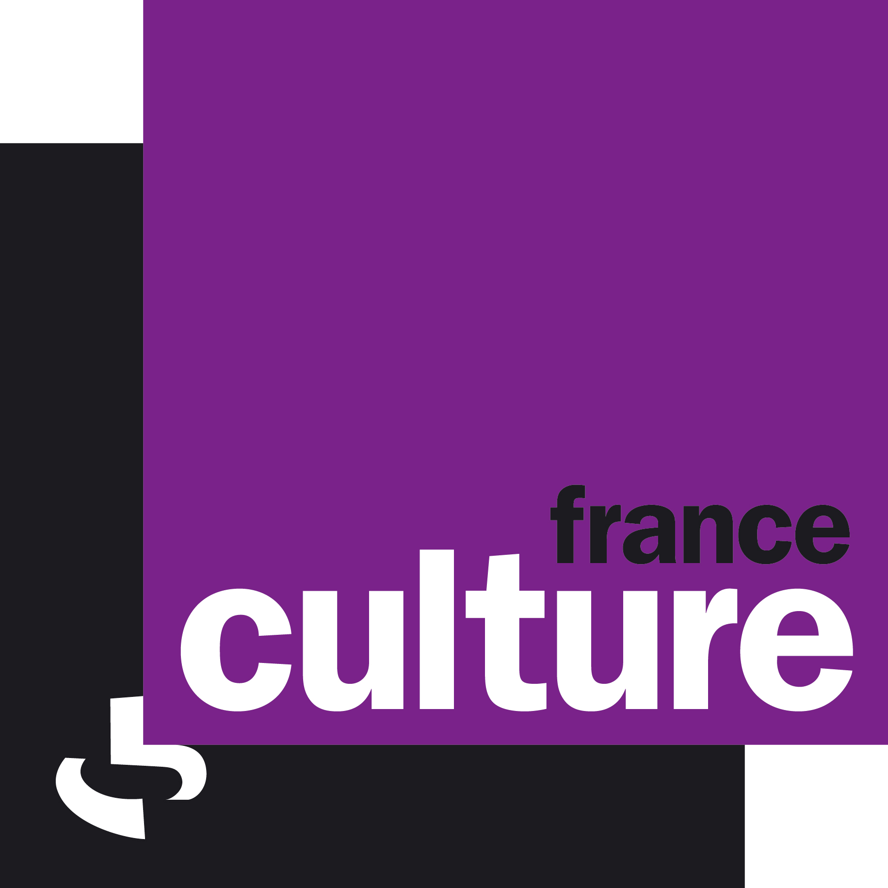 France_Culture_Olivier_Rouquan